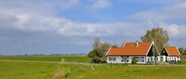Ferienwohnungen auf Texel